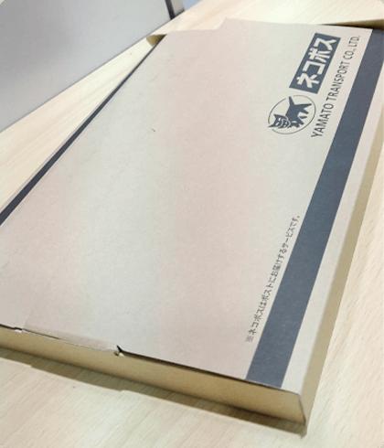MAXネコポス(段ボール)253円